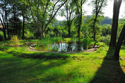 Schlosspark Mauerbach - Park © Schlosspark Mauerbach