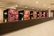 Austria Trend Hotel Savoyen - Seminarraum Olympia Mancini © Austria Trend Hotels