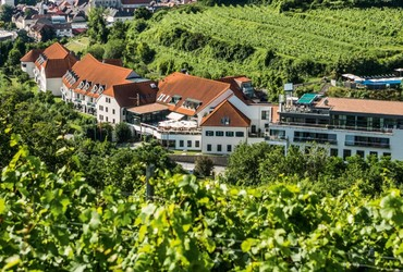 Steigenberger Hotel and Spa Krems